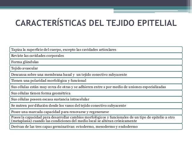 FUNCIONES DEL TEJIDO EPITELIAL Protección • De los tejidos subyacentes del cuerpos ante abrasiones y lesiones Transporte t...