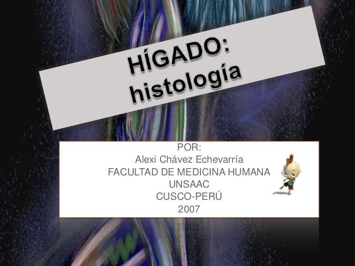 HÍGADO:<br />histología<br />POR: <br />Alexi Chávez Echevarría<br />FACULTAD DE MEDICINA HUMANA<br />UNSAAC<br />CUSCO-PE...