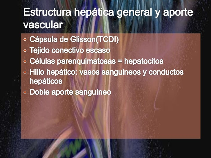 Hipocondrio derecho