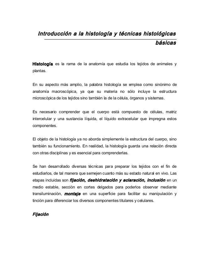 Increíble Sinónimo De La Anatomía Motivo - Imágenes de Anatomía ...