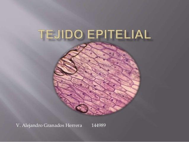 V. Alejandro Granados Herrera 144989