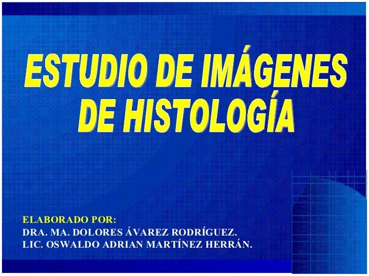 ELABORADO POR: DRA. MA. DOLORES ÁVAREZ RODRÍGUEZ. LIC. OSWALDO ADRIAN MARTÍNEZ HERRÁN.   ESTUDIO DE IMÁGENES  DE HISTOLOGÍA
