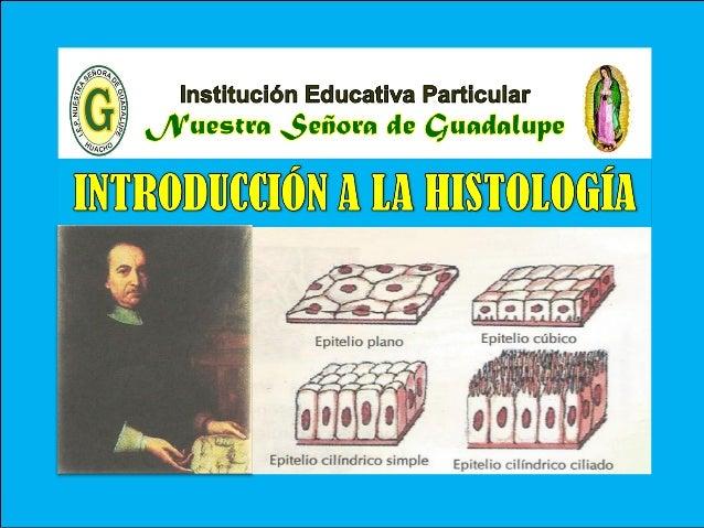 III - Unidad : Biología Tema: Histología – Parte I I.E.P «Nuestra Señora de Guadalupe» Es la rama de la Biología que estud...