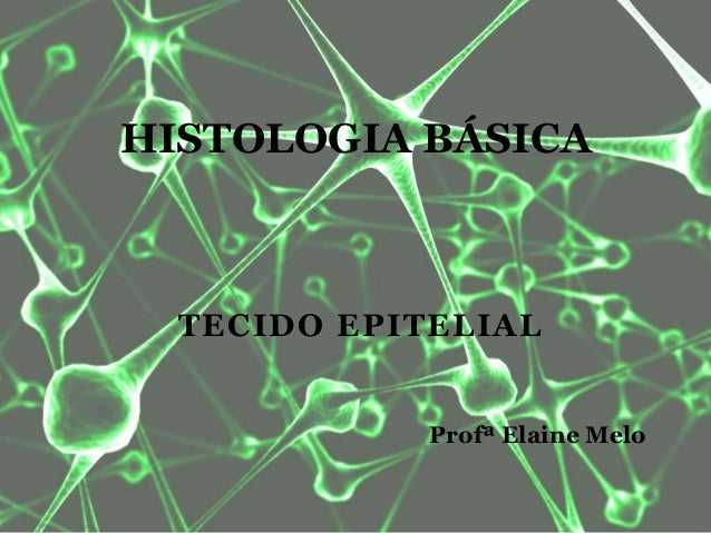 TECIDO EPITELIAL HISTOLOGIA BÁSICA Profª Elaine Melo