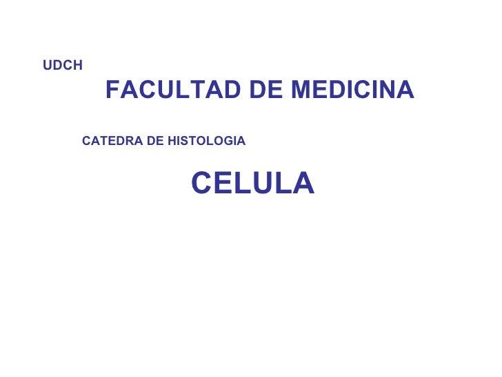 UDCH   FACULTAD DE MEDICINA CATEDRA DE HISTOLOGIA CELULA