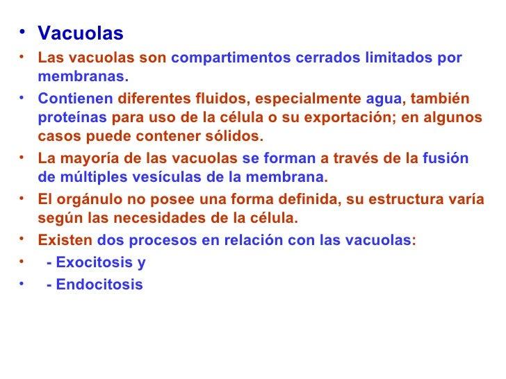 <ul><li>Vacuolas   </li></ul><ul><li>Las vacuolas son  compartimentos cerrados limitados por membranas. </li></ul><ul><li>...