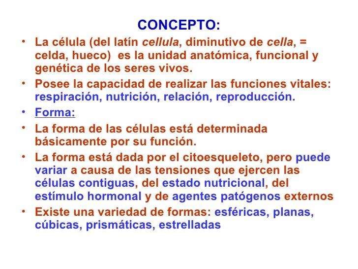 <ul><li>CONCEPTO: </li></ul><ul><li>La célula  (del latín  cellula , diminutivo de  cella , = celda, hueco)   es la unidad...