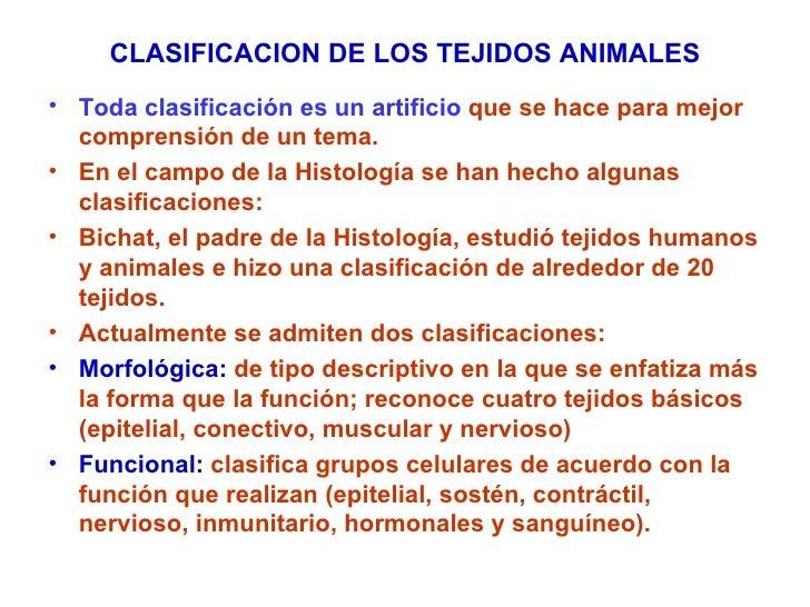 CLASIFICACION DE LOS TEJIDOS ANIMALES <ul><li>Toda clasificación es un artificio  que se hace para mejor comprensión de un...