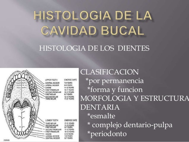 Histologia de la cabidad bucal
