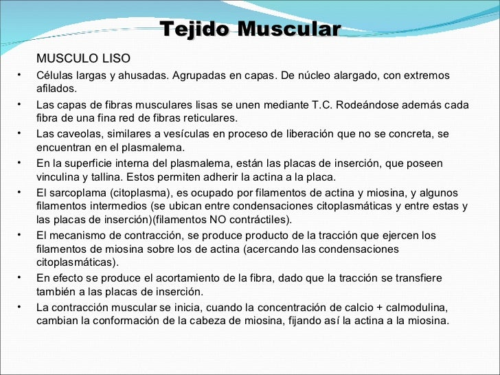Histologia General Tejido Muscular