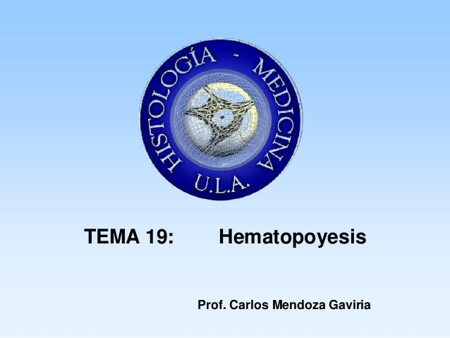 TEMA 19:      Hematopoyesis           Prof. Carlos Mendoza Gaviria