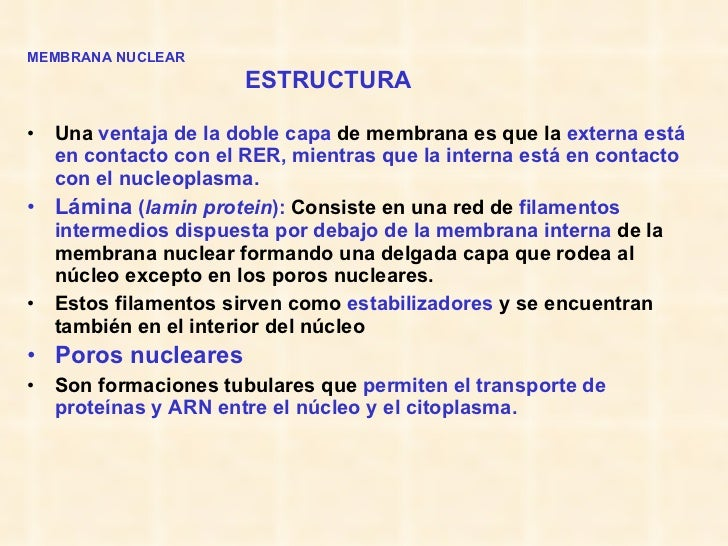 <ul><li>MEMBRANA NUCLEAR   </li></ul><ul><li>ESTRUCTURA </li></ul><ul><li>Una  ventaja de la doble capa  de membrana es qu...