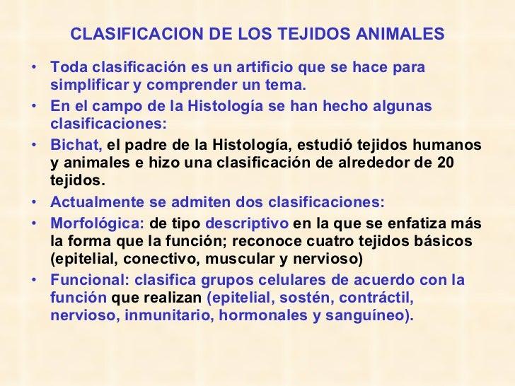 CLASIFICACION DE LOS TEJIDOS ANIMALES <ul><li>Toda clasificación es un artificio que se hace para simplificar y comprender...