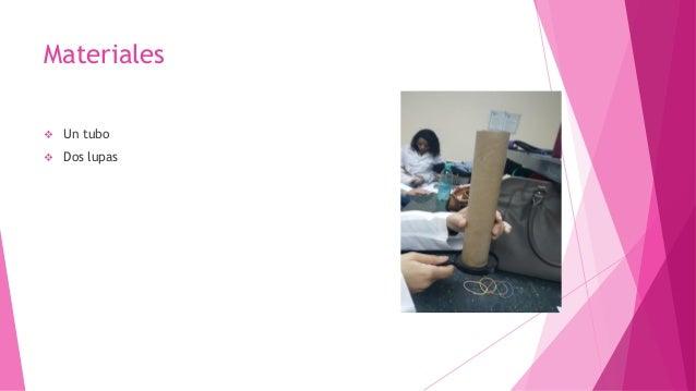 Histologia primer taller 2 Slide 3