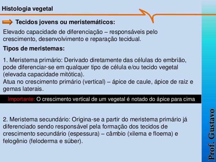 Histologia vegetal     Tecidos jovens ou meristemáticos:Elevado capacidade de diferenciação – responsáveis pelocrescimento...