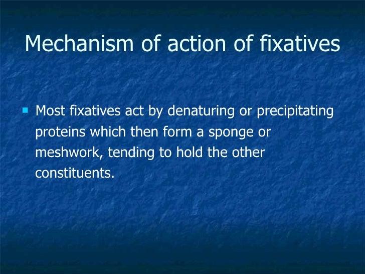 Mechanism of action of fixatives <ul><li>Most fixatives act by denaturing or precipitating  </li></ul><ul><li>proteins whi...