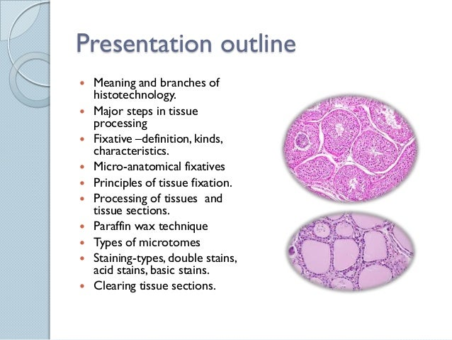 Histological Techniques For Life Science Researchers