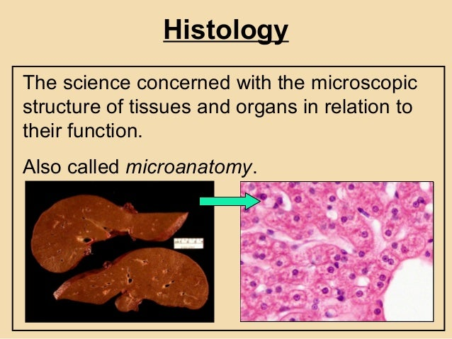 Histopathology In Practice - Sample Reception, Dissection, Processing…
