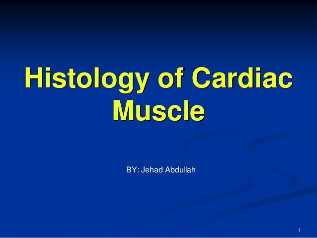 Histology of Cardiac Muscle 1 BY: Jehad Abdullah