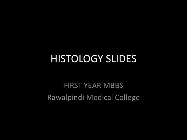 HISTOLOGY SLIDES FIRST YEAR MBBS Rawalpindi Medical College