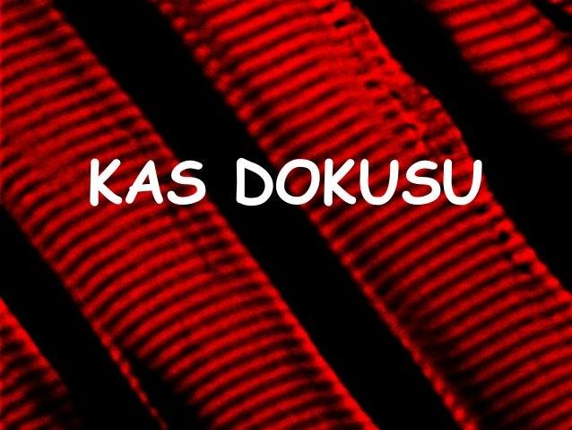KAS DOKUSU