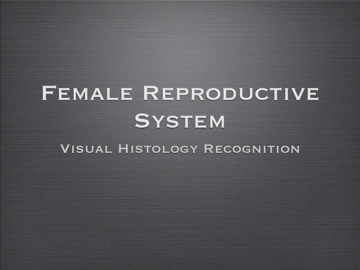 Female Reproductive       System  Visual Histology Recognition