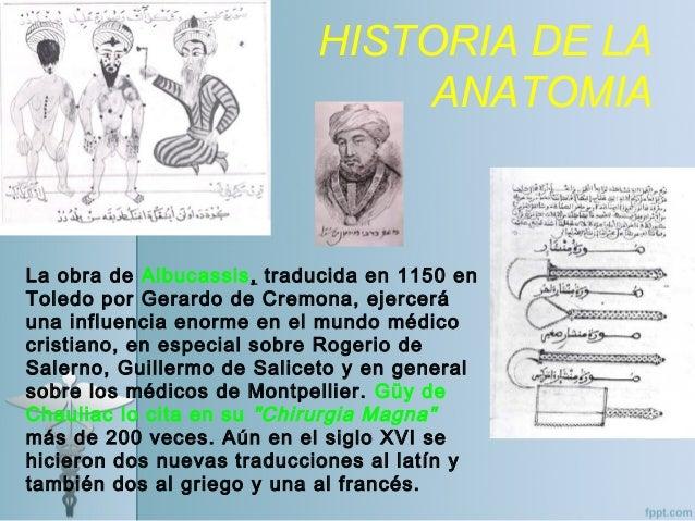 Historia anatomia2015