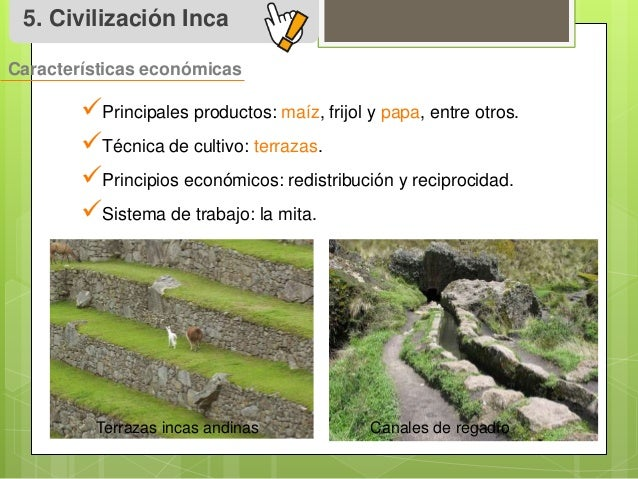 Eduardo Sistema De Cultivo Incas