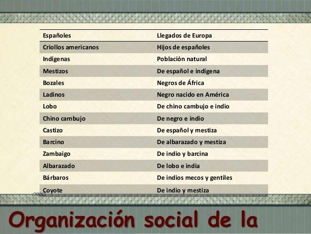  Las castas mexicanas, Ignacio García Barreda, 1777.  Organización social de la