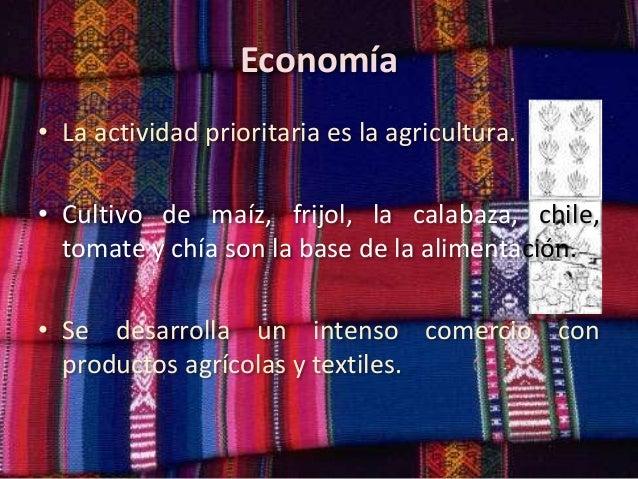 Economía • La actividad prioritaria es la agricultura. • Cultivo de maíz, frijol, la calabaza, chile, tomate y chía son la...