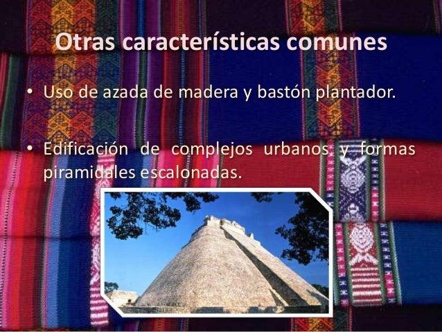 Otras características comunes • Uso de azada de madera y bastón plantador. • Edificación de complejos urbanos y formas pir...