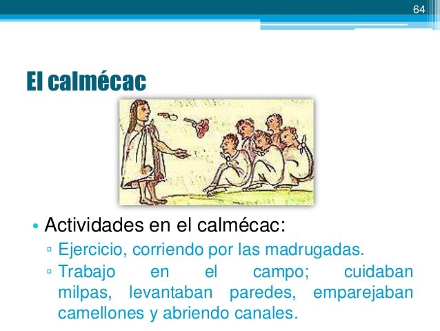 64  El calmécac  • Actividades en el calmécac: ▫ Ejercicio, corriendo por las madrugadas. ▫ Trabajo en el campo; cuidaban ...