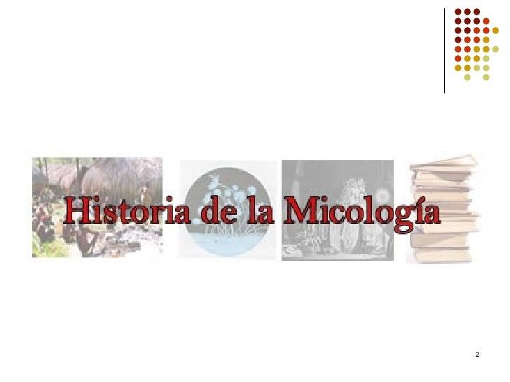 Historia De La Micologa Slide 2