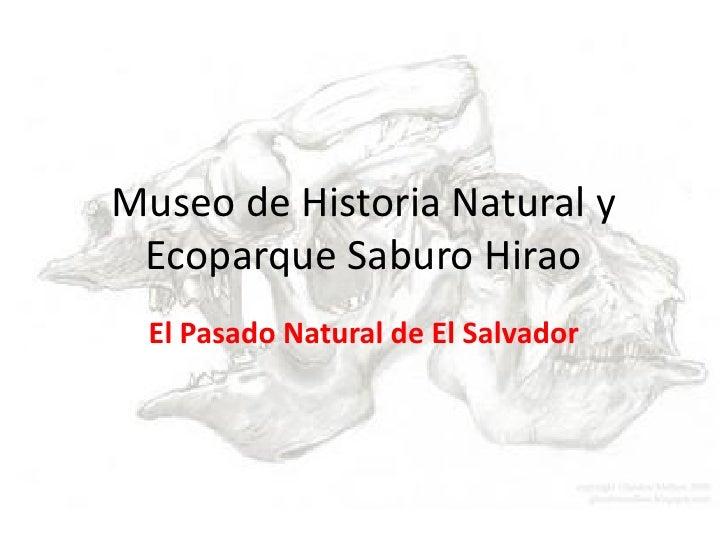 Museo de Historia Natural y Ecoparque Saburo Hirao El Pasado Natural de El Salvador