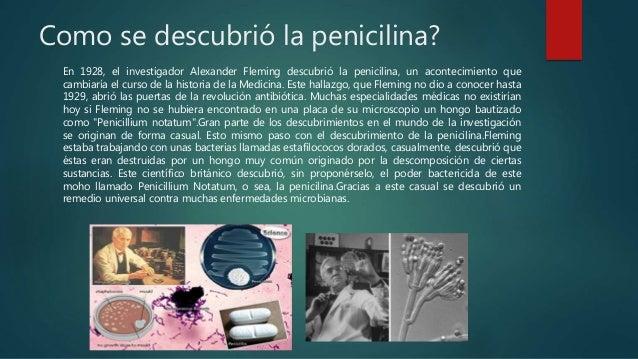 Resultado de imagen de Como se descubrio la penicilina