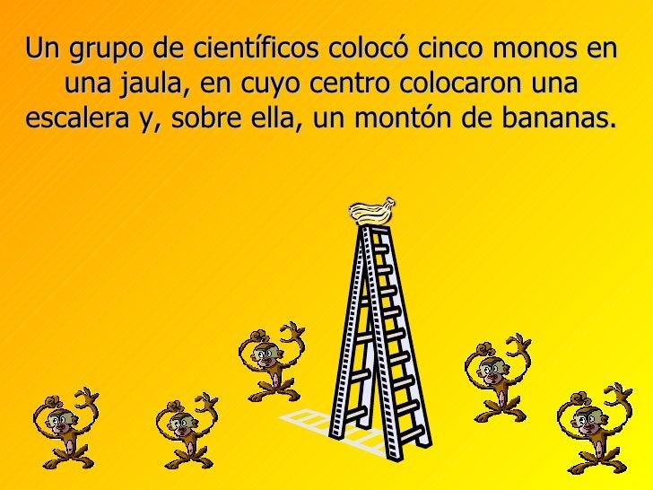 Un grupo de científicos colocó cinco monos en una jaula, en cuyo centro colocaron una escalera y, sobre ella, un montón de...