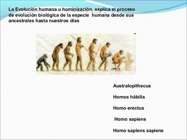 Evolucion de la sociedad humana
