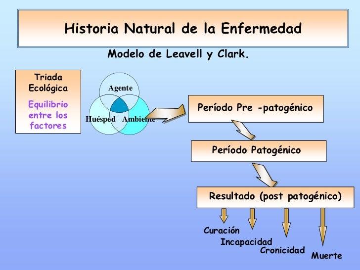 Teórico: Historia Natural de la Enfermedad y Niveles de