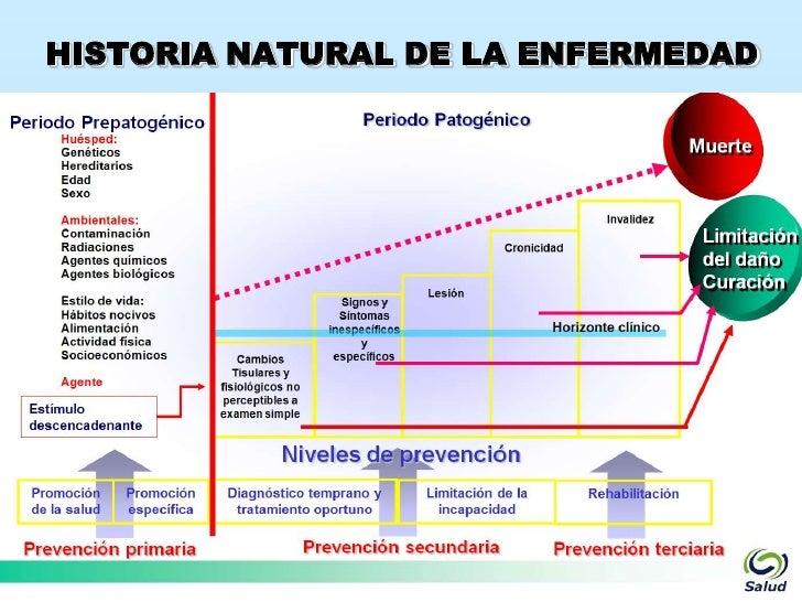 Historia natural de la enfermedad prog gino