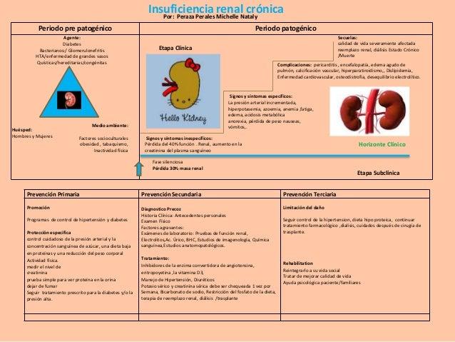 Insuficiencia Michelle Nataly renal crónica Por: Peraza Perales Periodo pre patogénico Agente: Diabetes Bacterianos:/ Glom...