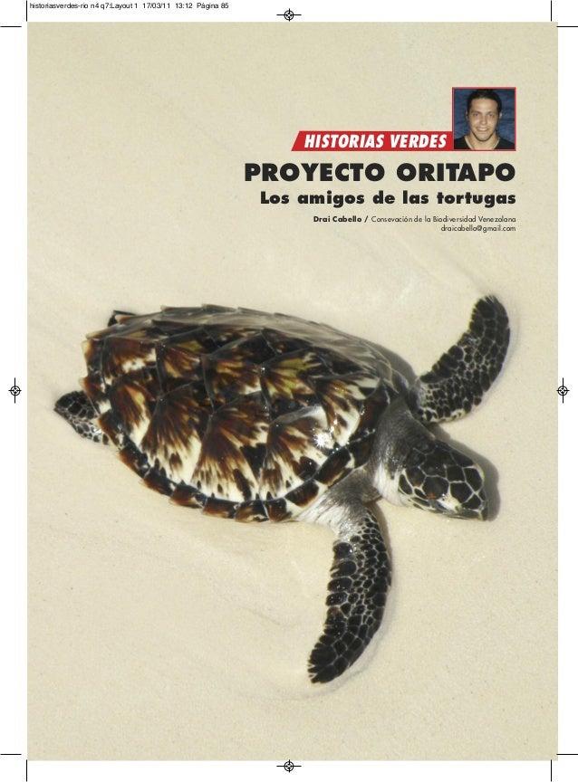 PROYECTO ORITAPO Los amigos de las tortugas Drai Cabello / Consevación de la Biodiversidad Venezolana draicabello@gmail.co...