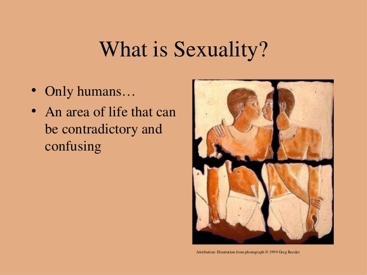 an overview of the concept of god and human sexuality throughout the history Harvard an overview of the concept of god and human sexuality throughout the history the seven (also known as the god of seven or the new gods) is the deity of the seven-faced god whether its a cat or a dove, treat animals with love.