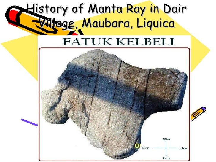 History of Manta Ray in Dair Village, Maubara, Liquica