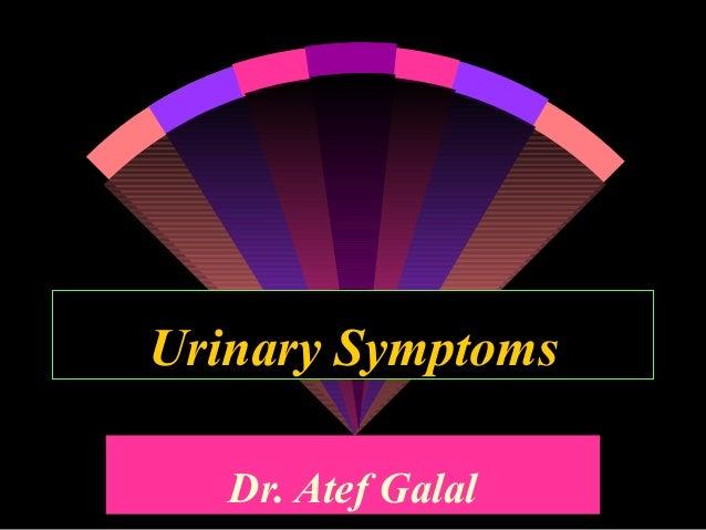 Urinary Symptoms   Dr. Atef Galal