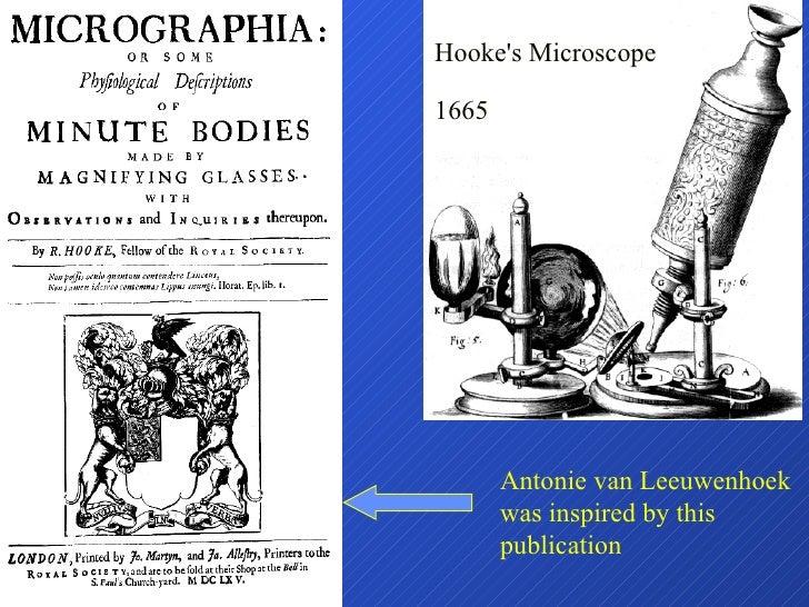 Hooke's Microscope 1665 Antonie van Leeuwenhoek was inspired by this publication
