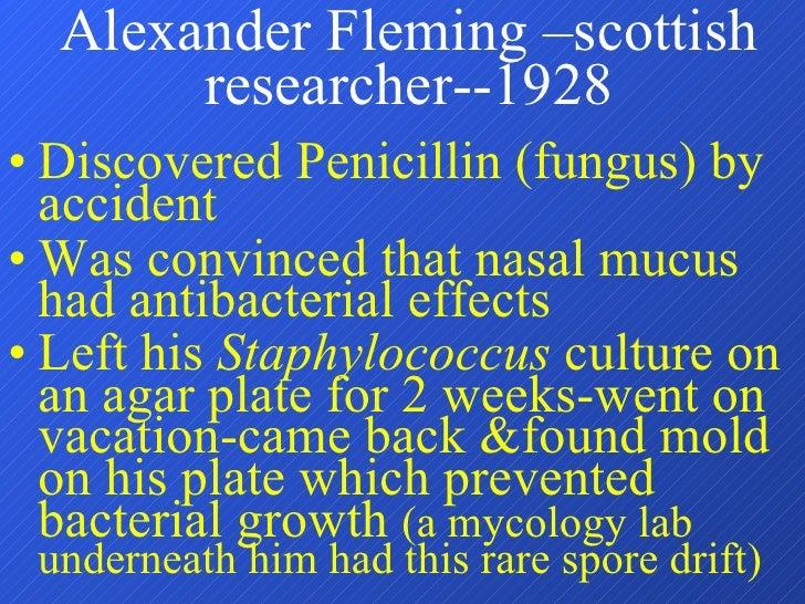Alexander Fleming –scottish researcher--1928 <ul><li>Discovered Penicillin (fungus) by accident </li></ul><ul><li>Was conv...
