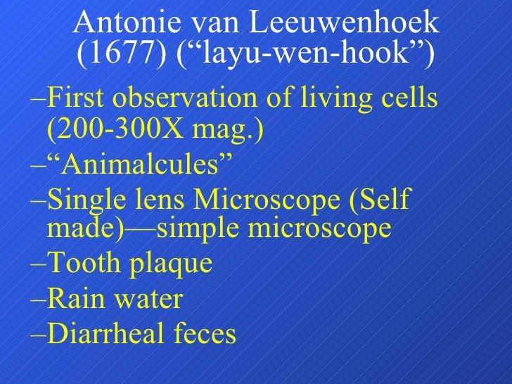 """Antonie van Leeuwenhoek (1677) (""""layu-wen-hook"""") <ul><ul><li>First observation of living cells (200-300X mag.) </li></ul><..."""