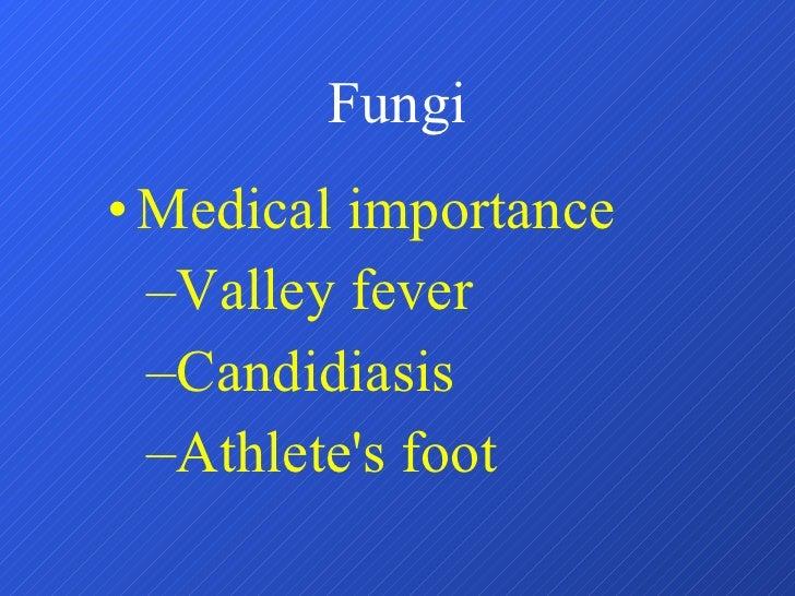 Fungi <ul><li>Medical importance </li></ul><ul><ul><li>Valley fever </li></ul></ul><ul><ul><li>Candidiasis </li></ul></ul>...