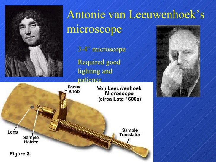 "Antonie van Leeuwenhoek's microscope 3-4"" microscope Required good lighting and patience"