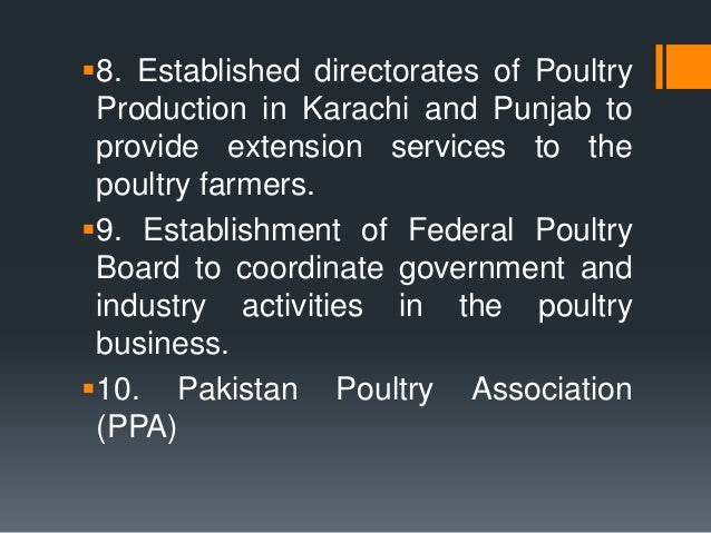 poultry business in pakistan Sabirs' group is the sparkling name, institutional landmark, inspiration and a  symbol of hope on the horizon of pakistan poultry industry the group carries a.